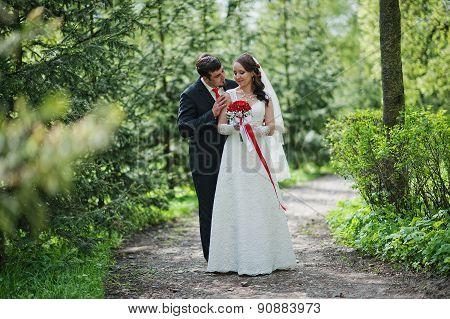 Wedding Couple Near Pine Trees