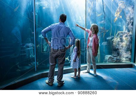 Happy family looking at fish tank at the aquarium
