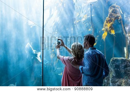 Couple taking photo of fish in the tank at the aquarium