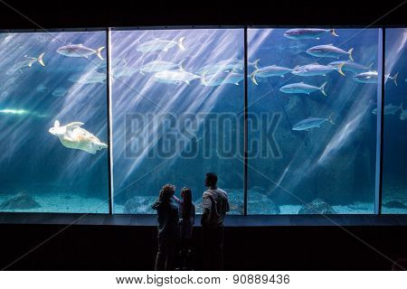 Happy family looking at the fish tank at the aquarium