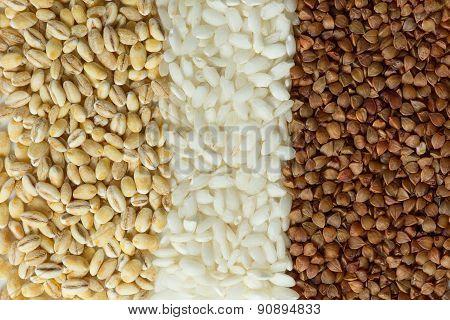 Buckwheat, oatmeal, and rice grains close-up shot