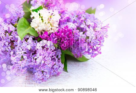 Lilac flowers bunch over white wooden background. Beautiful violet Lilac flower border design closeup. Copy space for your text