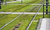pic of tram  - Rails tram line in amsterdam - JPG