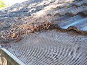 pic of gutter  - Residential house roof and partially cleaned gutter with flammable debris consisting of leaves - JPG