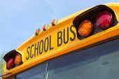 Постер, плакат: School Bus