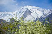 pic of karakoram  - Idyllic of Mountain and Valley in Northern area of Pakistan - JPG