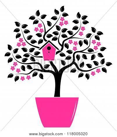 Flowering Tree In Pot