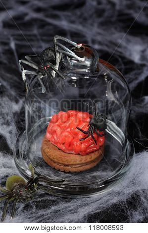 Biscuits With Marzipan In Form Of The Brain