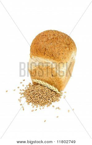 Loaf of Bran Bread with Wheat Grains And Ear