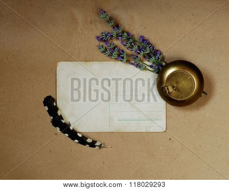 Vintage Background With Old Postcard, Snuffbox, Bouquet Of Lavender And  Woodpecker Feather