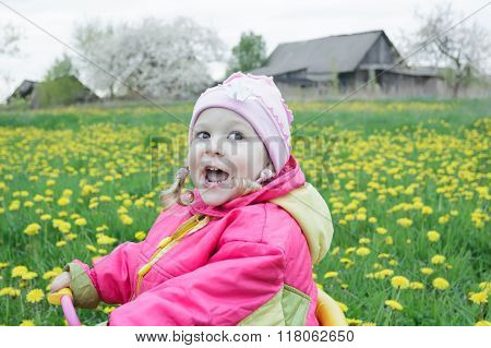 Adorable toddler girl driving pink and yellow tricycle across the spring blossoming dandelions meado