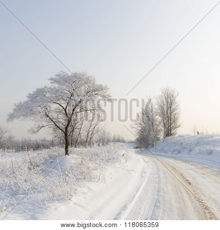 Winter Landscape Of The Moscow Region