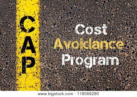 Business Acronym Cap Cost Avoidance Program