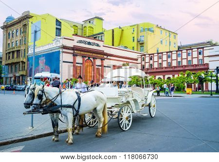 The Beautiful Carriage