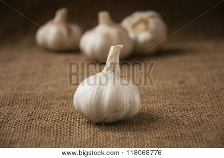 Garlic Close-up On Sacking. Burlap Background