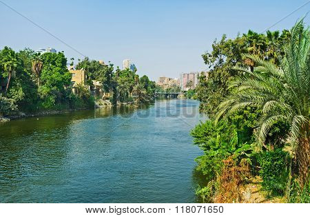 The Greenery Along The Canal