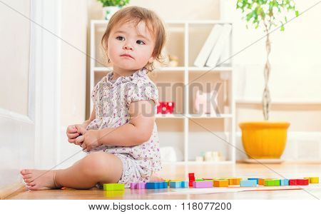 Happy Toddler Girl Playing With Her Toys