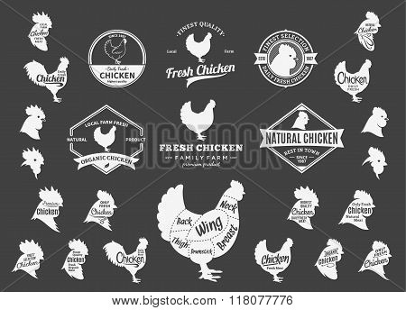 Vector Chicken Logo, Icons, Charts And Design Elements