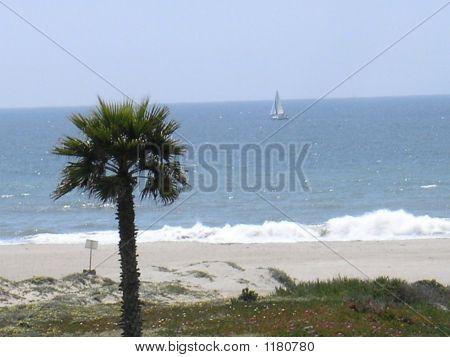 Mandalay Beach In Oxnard, California.