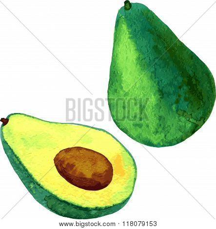 watercolor fruit, avocado