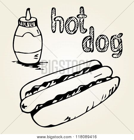 Hot Dog Hand Drawn Illustrations