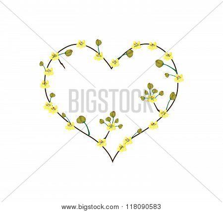 Yellow Cassod Flowers In A Heart Shape