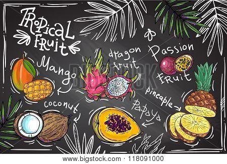 vector tropical fruit