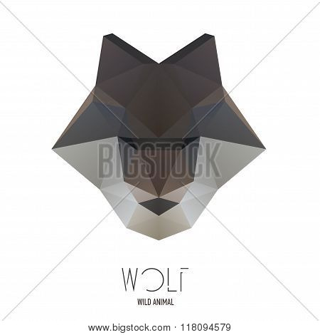 Polygonal Style Illustration Wolf