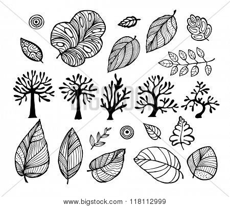 A set of leaves and trees, vector illustration