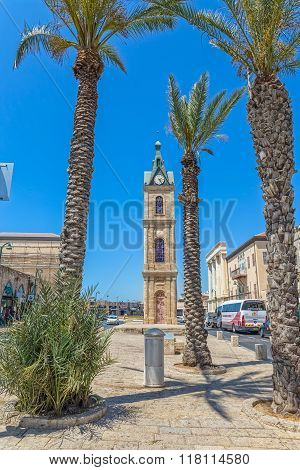 Jaffa Clock Tower and palm trees