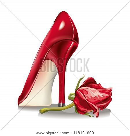red rosebud and shoes