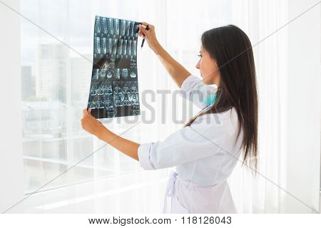 doctor looking at x-ray or MRI concept healthcare, medical and radiology concept.