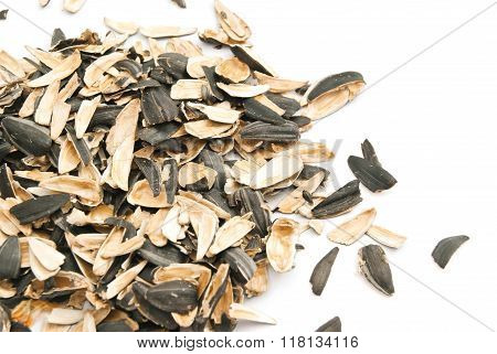Husks Of Sunflower Seeds On White