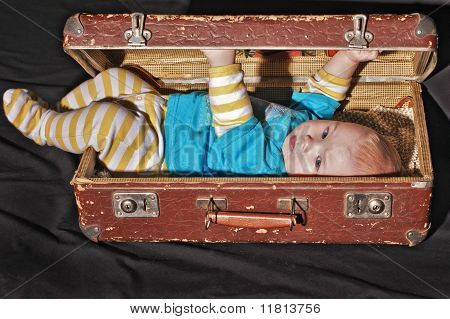 Baby Of The Old Suitcase