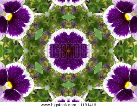 Stock Image Of Pansies Kaleidoscope