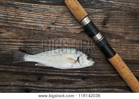 Spinning Rod, Reel And Fish Isolated On Wooden Background, Top View