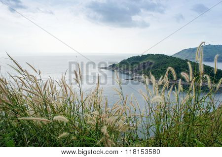 Top View Scene Of Phromthep Cape In Andaman Sea With Grass Flower Foreground (soft Focus)