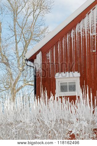 Traditional House With Red Wall And, Trees And Snow
