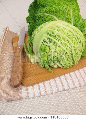 Winter vegetable savoy cabbage