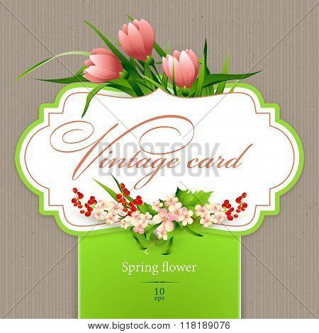 Spring  vintage elegant card with  flowers. Vector illustration