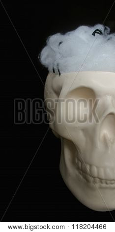 Ceramic skull with spiderwebs in its head