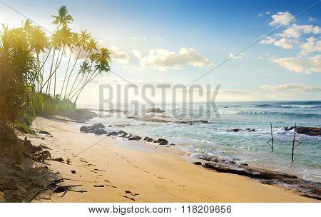 Fishing poles in ocean