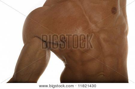 Pecho de constructor de cuerpo