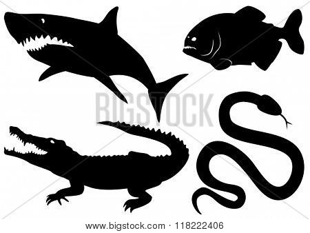 Set vector dangerous predatory animals - crocodile, piranha, shark,snake