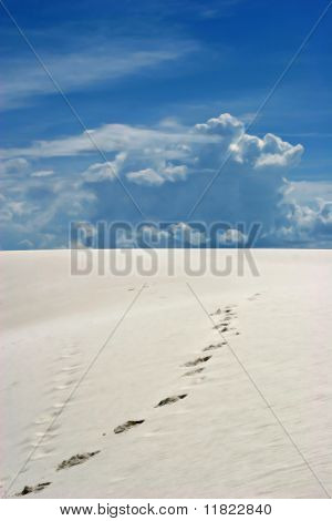 Foot prints on white sand dunes
