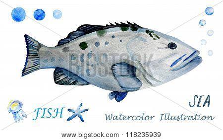 Watercolor tropical fish.