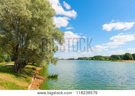 Beautiful Summer Landscape - Pond And Trees On The Shore On A Sunny Day