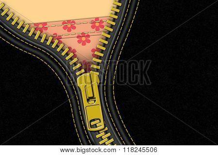 A Black Leather Zipper Background Illustration