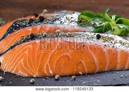Fresh Salmon Seasoned With Fine Herbs.