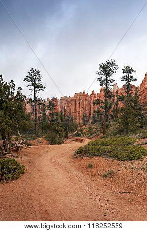Brice Canyon National Park In Utah, Usa
